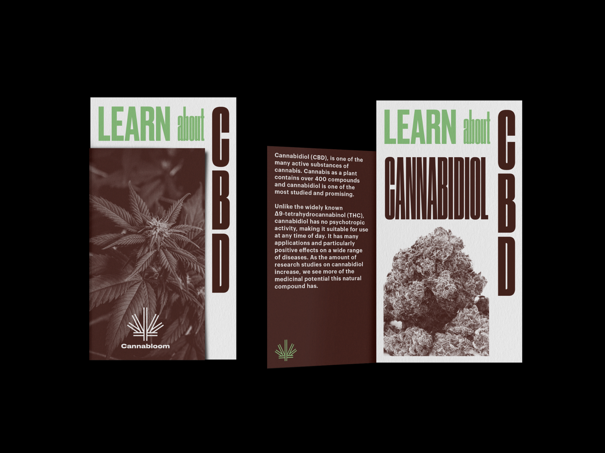 CANNABLOOM_STORE_ORIGHT_LEAFLET_2@2x